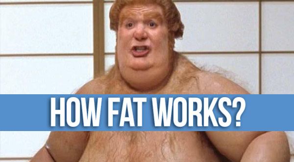 how-fat-works