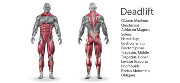 lifts-deadlift